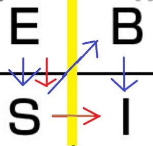 クワドランドの移動の順序